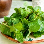 mint salad